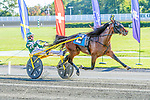 OCTOBER 12, 2019 : Mission Accepted driven by Yannick Gingras, wins the $250,000 Harry Harvey Trot at 1 1/4 mile, at Yonkers Raceway, on October 12, 2019 in Yonkers, NY.  Sue Kawczynski _ESW_CSM