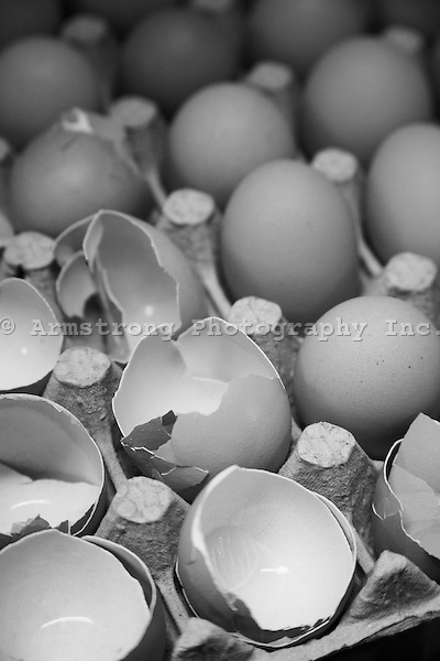 Close up of eggs and eggshells in an egg carton. Black and white image