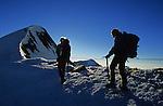 Crête sommitale conduisant au sommet de l'Ulrichshorn (3925 m)