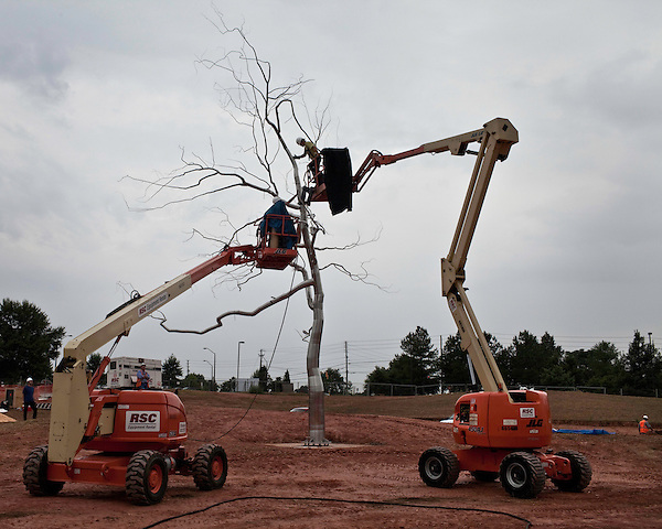 September 16, 2009. Raleigh, North Carolina..Artist Roxy Paine will was on site at the North Carolina Museum of Art to assemble and install Askew, a 43-foot-tall stainless steel tree-like sculpture as part of the ongoing renovations of the museum.