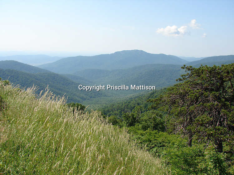 Shenandoah National Park, Virginia  - June 12, 2007:  The view goes on for miles in the Blue Ridge Mountains.
