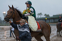 ARCADIA, CA  MARCH 10:   #7 Accelerate, ridden by Victor Espinoza, refuses to wear the flowers after winning the Santa Anita Handicap (Grade l) on March 10, 2018, at Santa Anita Park in Arcadia, CA. (Photo by Casey Phillips/ Eclipse Sportswire/ Getty Images)