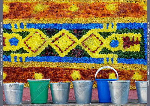 Colorful pattern made from flowers. Flower arrangement and gardening.