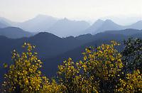 Europe/France/Provence-Alpes-Côtes d'Azur/06/Alpes-Maritimes/Arrière Pays Niçois/Col Saint-Roch : Vue de l'arrière pays niçois et ses montagnes