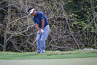 Yuta Ikeda (JAP) chips on to 2 after taking a drop during day 2 of the World Golf Championships, Dell Match Play, Austin Country Club, Austin, Texas. 3/22/2018.<br /> Picture: Golffile | Ken Murray<br /> <br /> <br /> All photo usage must carry mandatory copyright credit (&copy; Golffile | Ken Murray)