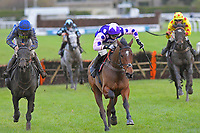 Winner of The John And Jean Taylor's Diamond Anniversary Handicap Hurdle Dan McGrue (c)  ridden by Harry Cobden and trained by Paul Nicholls during Horse Racing at Plumpton Racecourse on 4th November 2019