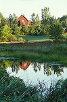 Reflections, farm pond, Rural landscape, Lanark County, Ontario