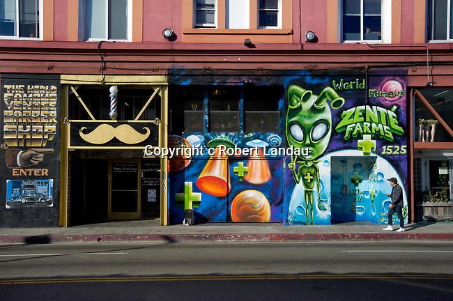 Street scene with mural and a pedestrian in Venice Beach, CA