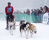 2nd February 2019, Thuringia, Frauenwald, Germany; Sled dog handler Andreas Birkel and his team during a sled dog race. 120 mushers from five nations with their huskies, samoyeds, malamutes or Greenland dogs started.