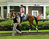 Cash for Clunkers before The Delaware Handicap (gr 2)at Delaware Park on 7/21/12
