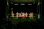 2019 Town of Cary Christmas Tree Lighting & A Dash of Page Walker Victorian Christmas