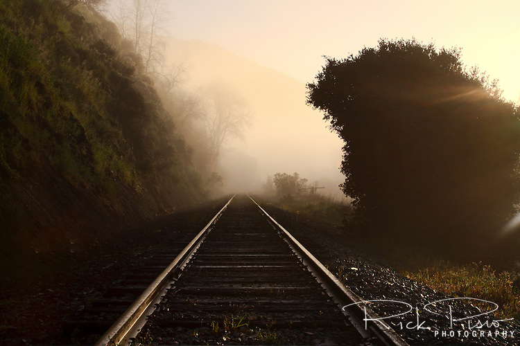 Railroad tracks in the fog, Niles Canyon, California. Now operated by the Niles Canyon Railway the right away was first used by the Central Pacific Railway to complete the Transcontinental Railroad.