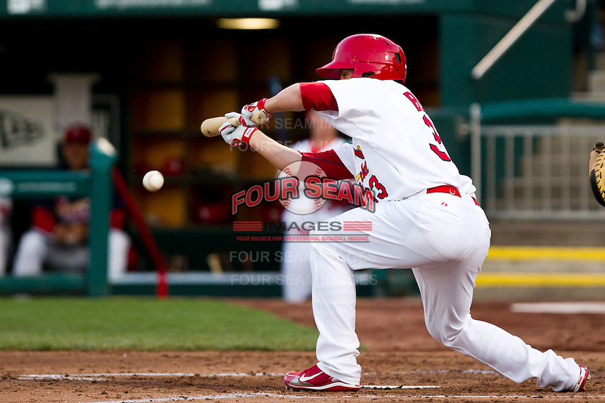Michael Blazek (33) of the Springfield Cardinals lays down a bunt during a game against the Tulsa Drillers on April 29, 2011 at Hammons Field in Springfield, Missouri.  Photo By David Welker/Four Seam Images.