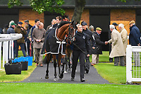Horses enter the Parade Ring before the first race during Horse Racing at Salisbury Racecourse on 14th August 2019