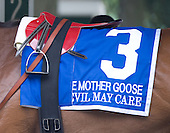 Glencrest Farm's Devil May Care wins the Grade 1 Mother Goose Stakes for 3-year-old fillies for jockey John Velazquez and trainer Todd Pletcher. Connie And Michael finished second. Also in the field: Biofuel, Ailalea, and Katy Now.