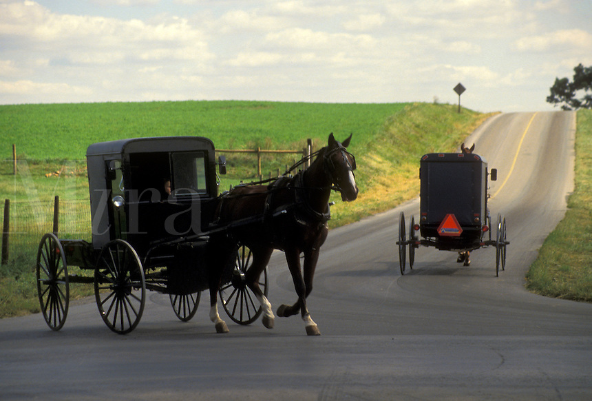 AJ3038, amish, horse and buggy, Amish country, Lancaster County, Pennsylvania, Pennsylvania Dutch Country, Two Amish horse and buggies pass by each other at an intersection on a country road in Lancaster in the state of Pennsylvania.