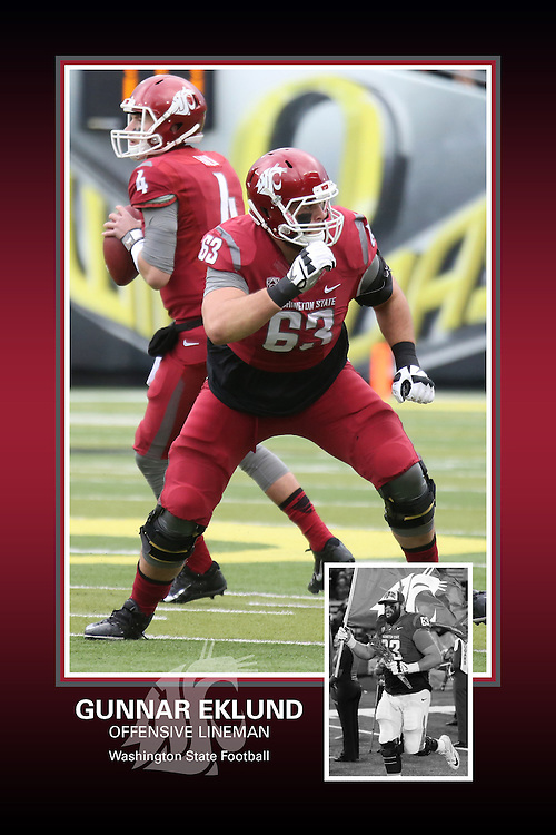 Memorabilia print for Gunnar Eklund from the 2015 Washington State football season in which the Cougs went 9-4, including a Sun Bowl victory over the Miami Hurricanes.