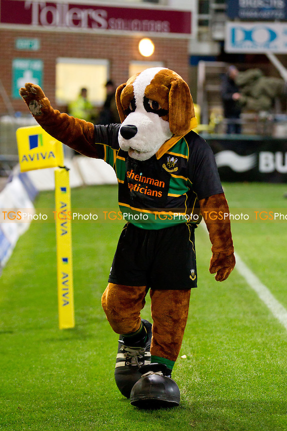 The Saints mascot waves to the crowd pre kick off - Northampton Saints RFC vs Saracens RFC - Aviva Premiership Rugby at Franklin's Gardens - 26/11/11 - MANDATORY CREDIT: Ray Lawrence/TGSPHOTO - Self billing applies where appropriate - 0845 094 6026 - contact@tgsphoto.co.uk - NO UNPAID USE.