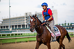 LOUISVILLE, KY - MAY 02: Coach Rocks gallops at Churchill Downs on May 2, 2018 in Louisville, Kentucky. (Photo by Alex Evers/Eclipse Sportswire/Getty Images)