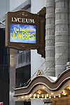 Theatre Marquee unveiling for 'The Realistic Joneses' starring Toni Collete, Michael C. Hall, Tracy Letts and Marisa Tomei. The play is written by Pulitzer Prize finalist Will Eno and directed by Sam Gold at The Lyceum Theatre on February 23, 2014 in New York City.