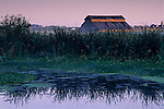 Sunrise light on barn as seen from the Arcata Marsh, Arcata, Humboldt County, CALIFORNIA