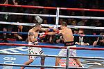 Gennady Golovkin vs Vanes Martirosyan<br /> Cecilia Braekhus vs Kali Reis<br /> Ryan Martin vs Breidis Prescott<br /> <br /> Lugar: StubHub Center, Carson, California.