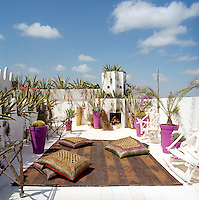 The roof top terrace features an outdoor fireplace and is punctuated by painted plant pots with a leather rug and scatter cushions upholstered in Kuba cloth