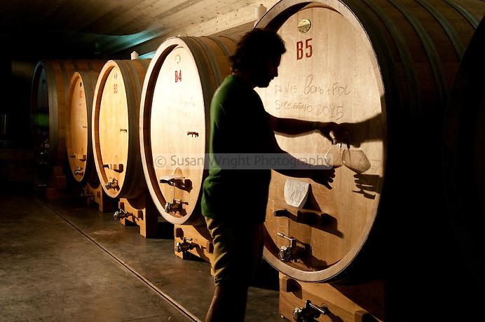 The cantina/cellar of the Occhipinti biodynamic winery, near Vittoria, Sicily, Italy