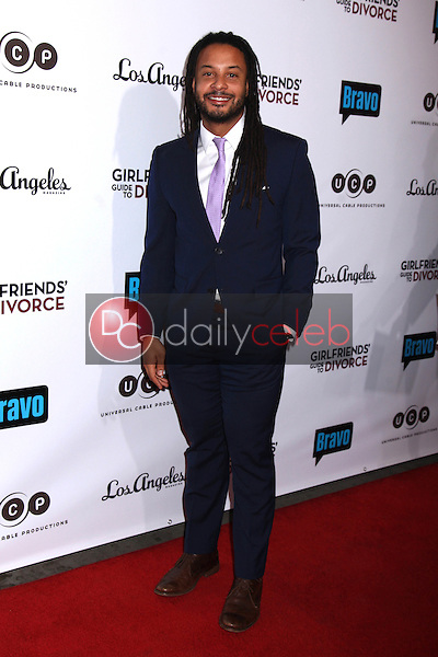 """Brandon Jay McLaren<br /> at the """"Girlfriends Guide to Divorce"""" Premiere Screening, Ace Hotel, Los Angeles, CA 11-18-14<br /> David Edwards/DailyCeleb.com 818-915-4440"""