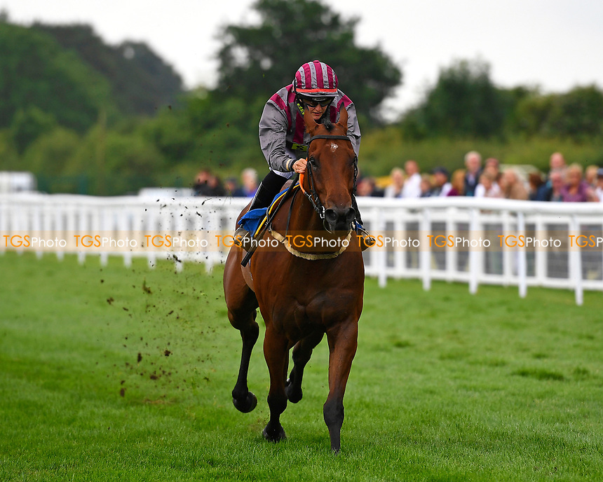 Winner of The Inspire Foundation Veterans' Handicap, Pettochside ridden by Joe Gordon and trained by John Bridger during Whitsbury Manor Stud Bibury Cup Day Racing at Salisbury Racecourse on 28th June 2017