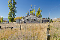 Old woolshed and poplar trees in the Waitaki Valley, Otago, South Island, New Zealand - stock photo, canvas, fine art print