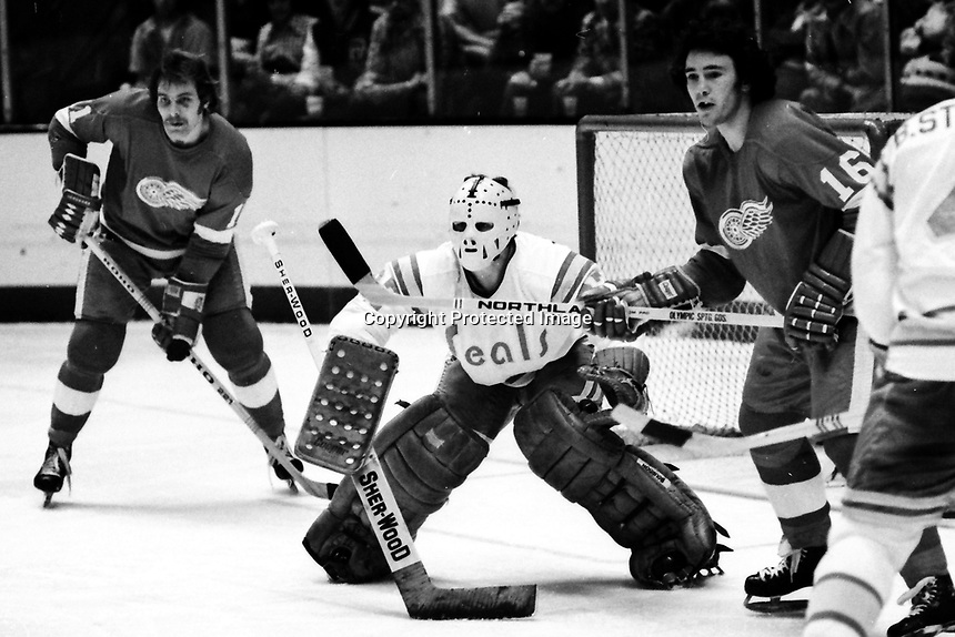 Detroit Redwings Hank Nowak and Earl Anderson flank Seal goalie Gilles Meloche (1975 photo/Ron Riesterer)