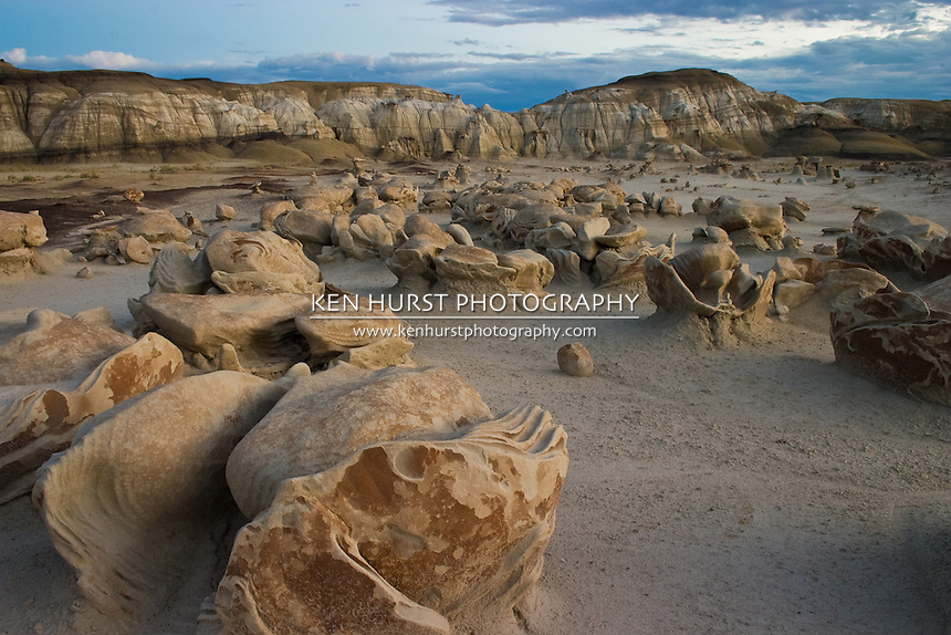 "Very strange rock formations known as the ""dinosaur eggs"" in the Bisti Wilderness area in northwest New Mexico. Excellent example of the power of erosion."