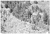 Side view of Ames Trestle (RGS Bridge 43-A) from Ames Gulch.<br /> RGS  Ames, CO  Taken by Maxwell, John W. - 8/1960