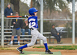 Los Altos Little League Majors tryouts at Los Altos High School, January 11, 2014