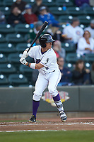 Alex Call (8) of the Winston-Salem Dash at bat against the Salem Red Sox at BB&T Ballpark on April 21, 2018 in Winston-Salem, North Carolina.  The Dash walked-off the Red Sox 4-3.  (Brian Westerholt/Four Seam Images)