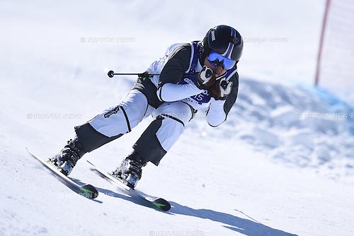 Takahiro Ishizuka (JPN), <br /> FEBRUARY 13, 2015 - Freestyle Skiing : <br /> 27th Winter Universiade Granada 2015 <br /> Men's Ski cross seeding <br /> at Sierra Nevada, Granada, Spain. <br /> (Photo by AFLO SPORT) [1220]