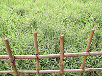 Stock photo of wooden fence overlooking grass from above.