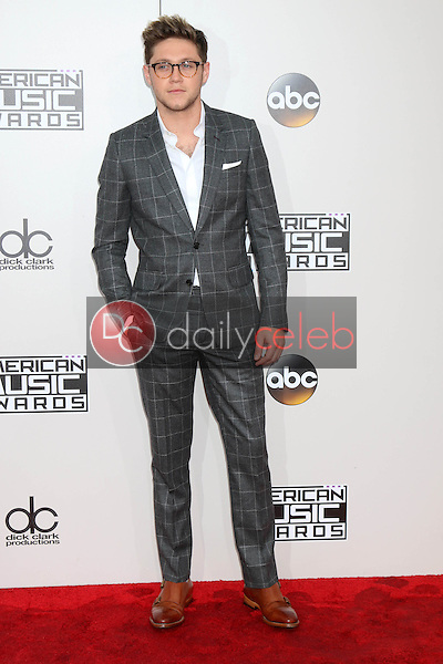 Niall Horan<br /> at the 2016 American Music Awards, Microsoft Theater, Los Angeles, CA 11-20-16<br /> David Edwards/DailyCeleb.com 818-249-4998