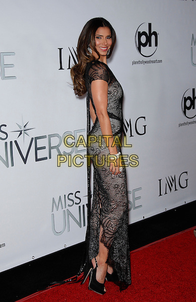 20 December 2015 - Las Vegas, NV -  Roselyn Sanchez.  2015 Miss Universe Red Carpet at the Planet Hollywood Resort and Casino. <br /> CAP/ADM/MJT<br /> &copy; MJT/AdMedia/Capital Pictures
