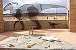 Big Water Visitor Center,  dinosaur exhibits