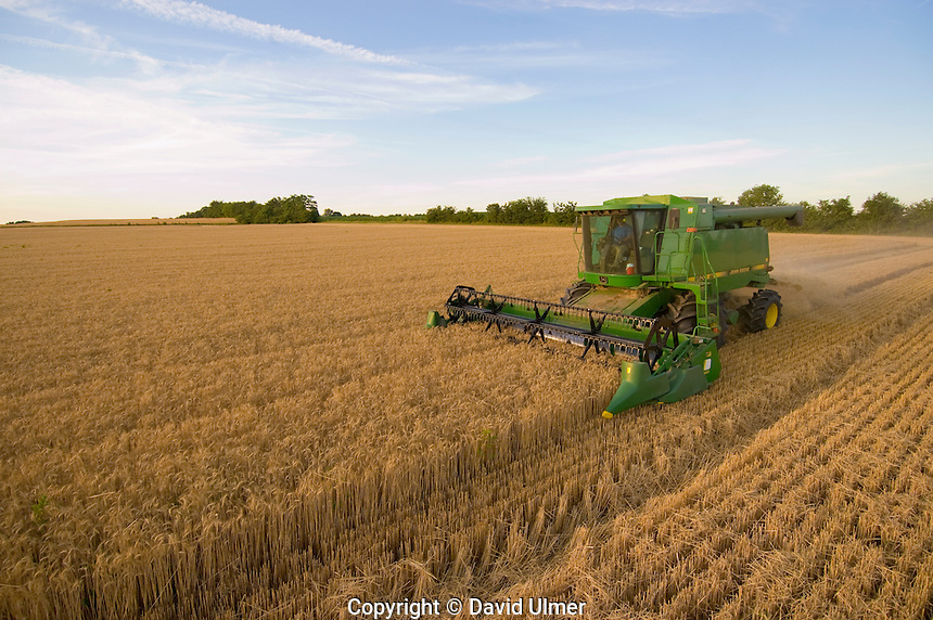 John Deere combine in winter wheat..