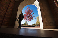 McCain doorway arch with fall leaves.<br />  (photo by Megan Bean / &copy; Mississippi State University)