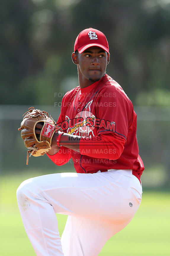 St. Louis Cardinals Victor DeLeon #49 during minor league spring training practice at the Roger Dean Sports Complex on March 28, 2012 in Jupiter, Florida.  (Mike Janes/Four Seam Images)
