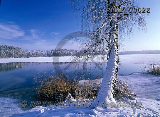 Marek, CHRISTMAS LANDSCAPES, WEIHNACHTEN WINTERLANDSCHAFTEN, NAVIDAD PAISAJES DE INVIERNO, photos+++++,PLMP0002Z,#xl#