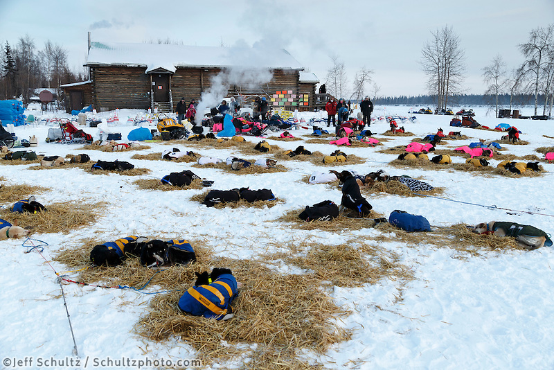 Teams rest in the early evening outside the Tanana community center on March 10, 2015.  2015 Iditarod.<br /> <br /> (C) Jeff Schultz/SchultzPhoto.com - ALL RIGHTS RESERVED<br />  DUPLICATION  PROHIBITED  WITHOUT  PERMISSION