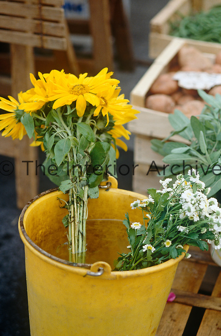 Flowers from the garden in a cheeful yellow plastic bucket