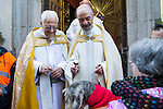 A dog is blessed by Padre Angel at San Anton church in Madrid marking San Anton Abad's Day (Saint Anthony), on January 17, 2016. Pet animals, many dressed in their finest, trooped into churches across Spain in search of blessing on the patron saint of animals Saint Anthony's Day.  (ALTERPHOTOS/Rodrigo Jimenez)