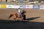 MFHS Barrels Rider 364