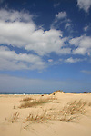 Israel, Sharon region. Sand dunes in Michmoret